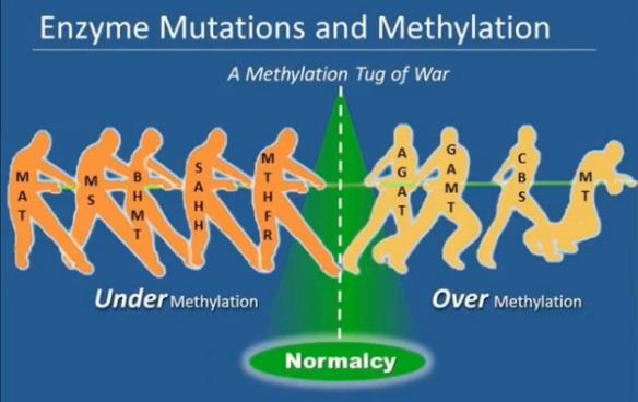 Under-Over-Methylation